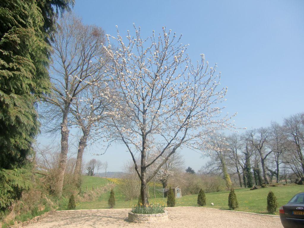 Gardens-25